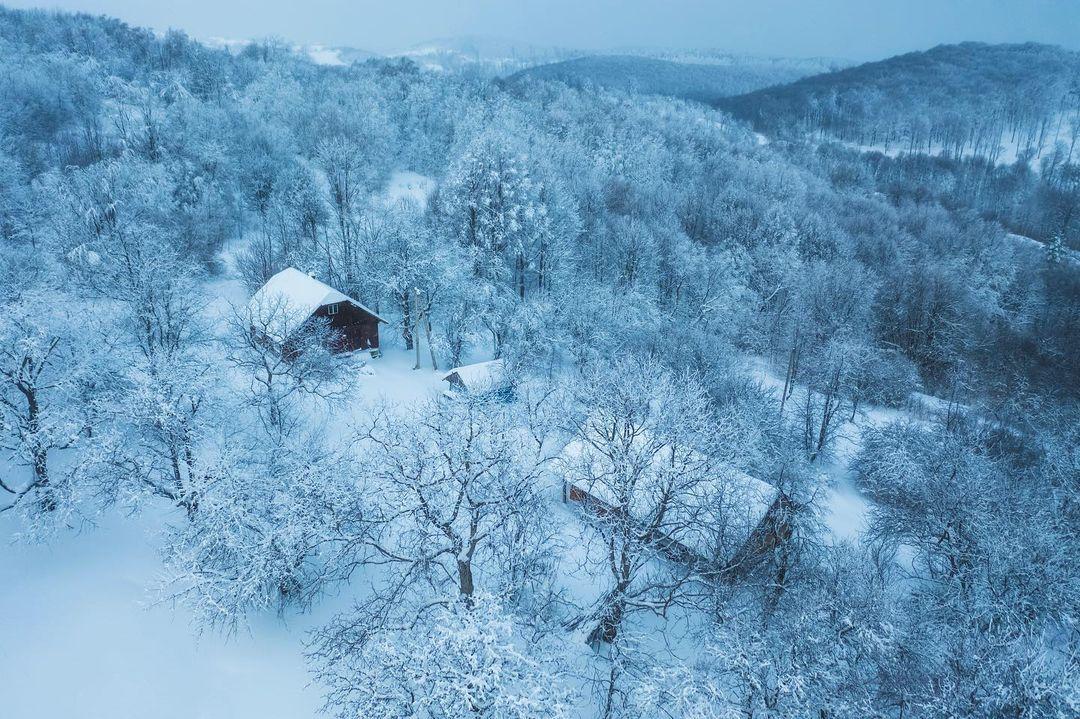 У Мережі з'явилися вражаючі знімки засніжених Карпат (ФОТО)