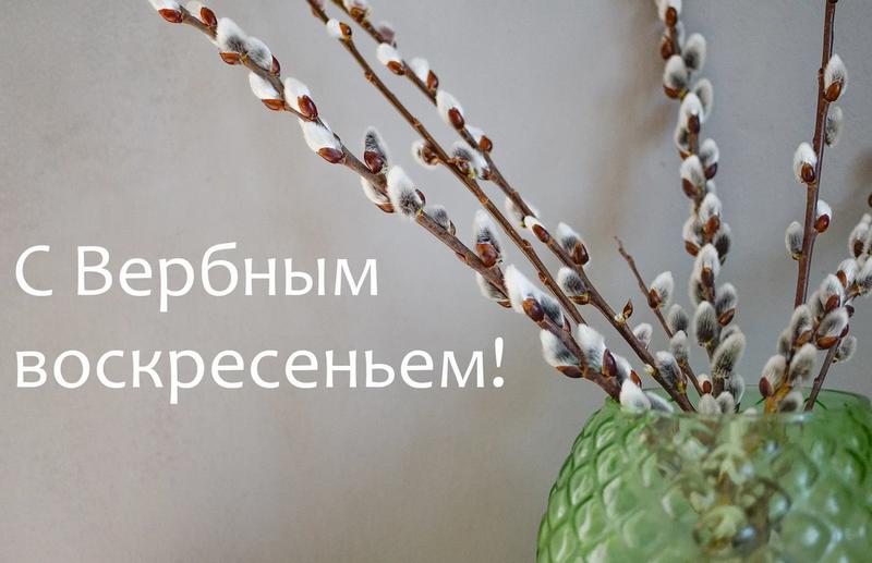 Поздравления с Вербным воскресеньем 2020 - стихи, открытки - Апостроф