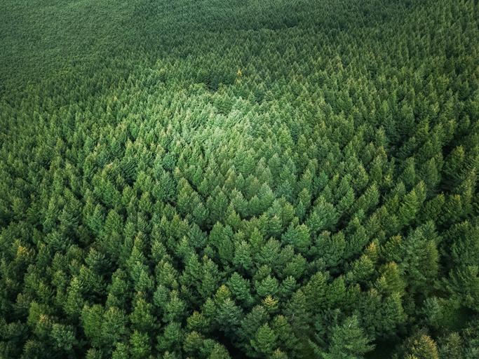 Зміни клімату можуть призвести до вимирання українців