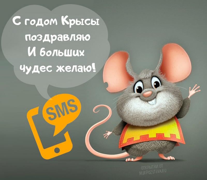 Смешные поздравления к году крысы