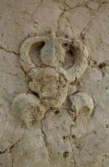 """В Индии обнаружили древние саркофаги """"на ножках"""" возрастом 4 тысяч лет (ФОТО, ВИДЕО) 1"""