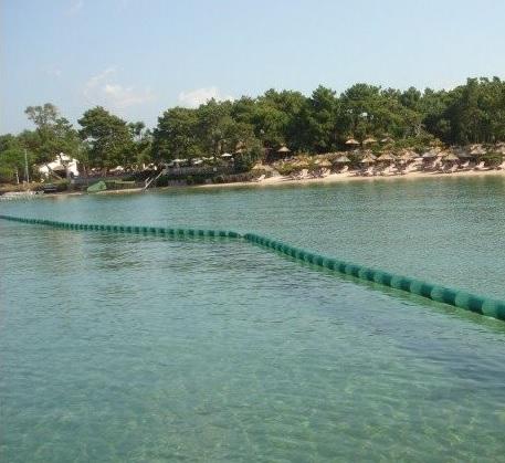 Ученые объяснили, почему в Азовском море стало так много медуз