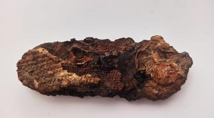 Археологи виявили в некрополі кресало часів Середньовіччя: фото